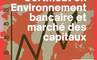 Certificat en Environnement Bancaire et Marché Des Capitaux